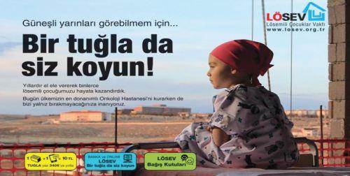 losev_bir_tugla